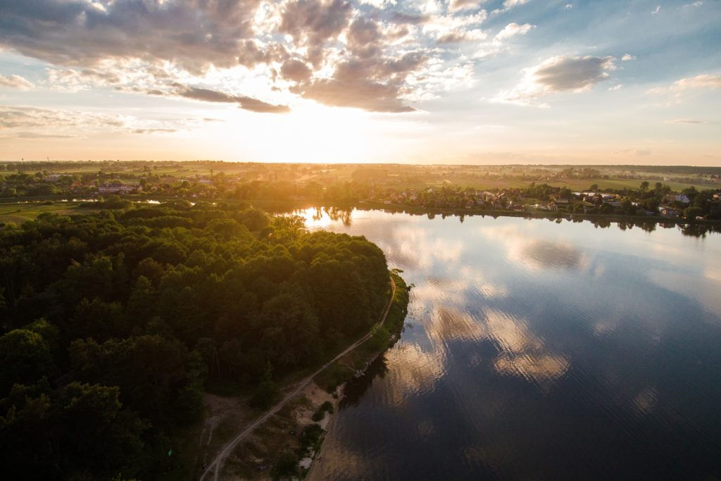 Gdzie w Polsce Uprawia się Chmiel